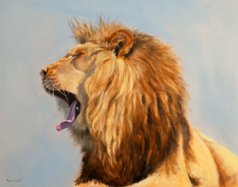 Bed Head - Lion, Oil on Panel, 11x14, 2012.